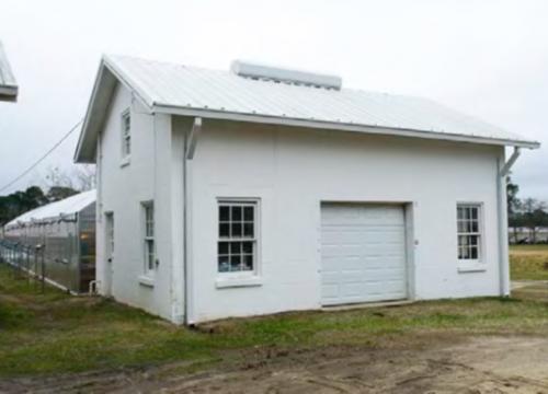 Greenhouse #3 Agronomy