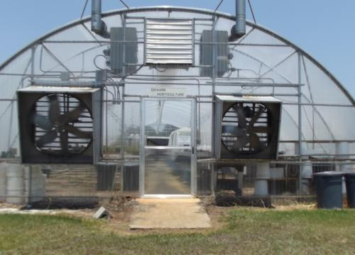 Horticulture Greenhouse 2