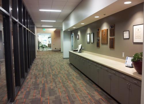 Office Suite Corridor- Millwork