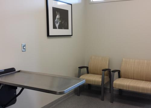 Veterinary Medicine Learning Center Exam Room