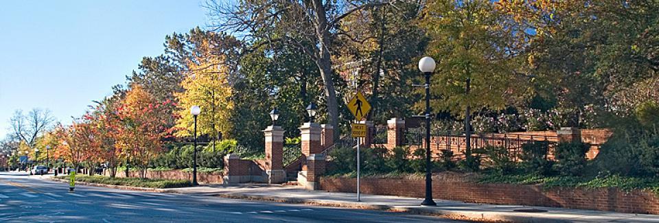 Jackson Street Improvements